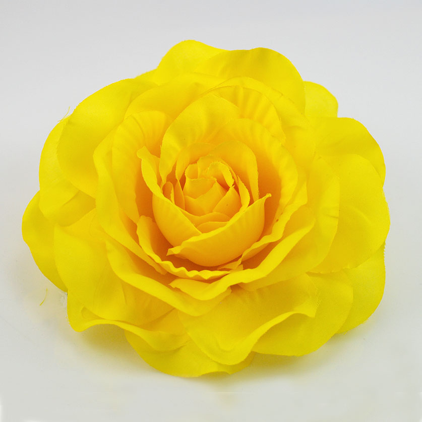 Yellow Rose Flower ...