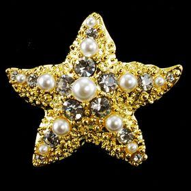 Star Fish Brooch