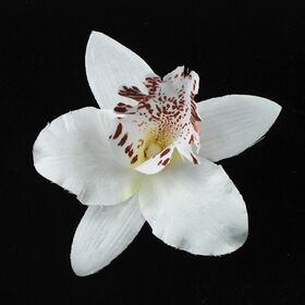 Orchid Flower Pin
