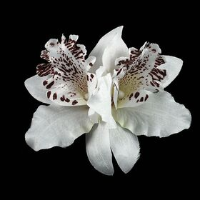 Orchid Flowe PIn clip